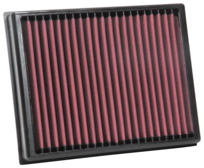 AEM Ranger 2.3L DryFlow Air Filter (2019-2020)