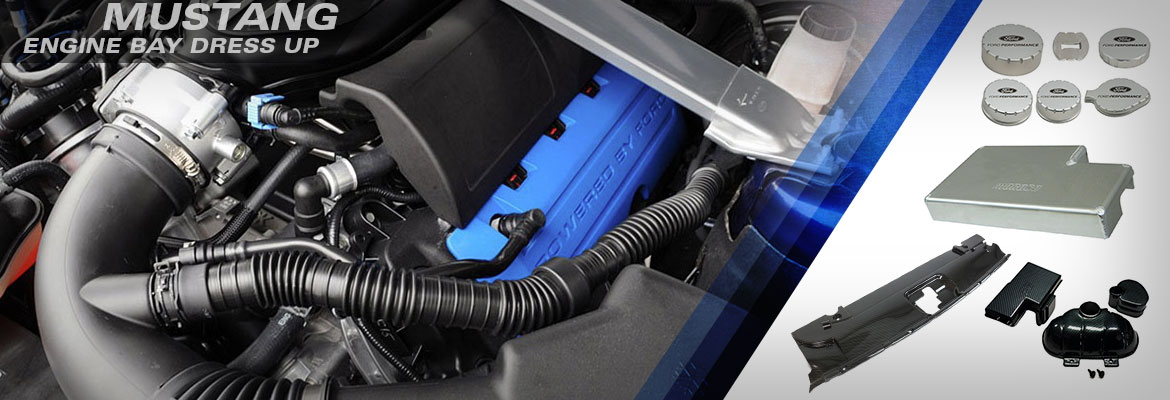 Ford Mustang Engine Bay Dress-Up