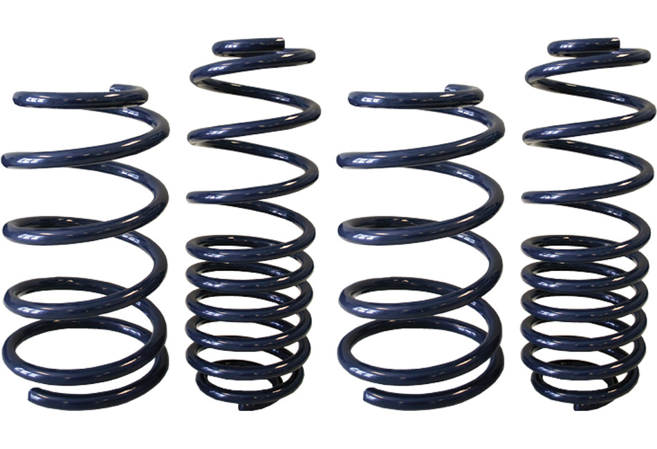 Steeda Boss Mustang Performance Lowering Springs (12-13 Boss)