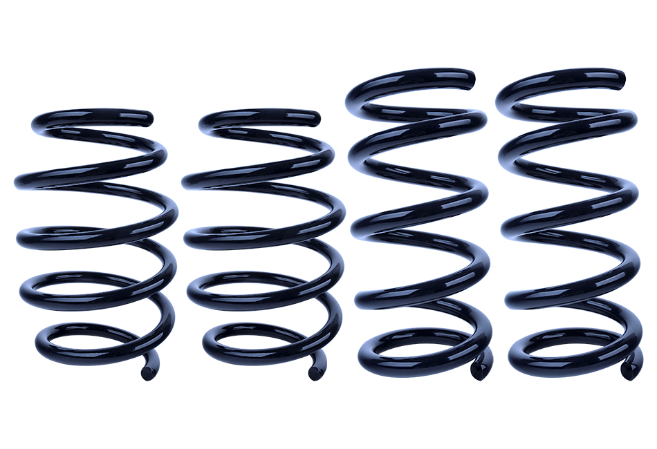 Steeda Mustang Ultralite Lowering Springs - Linear EcoBoost (2015-2020)