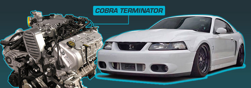 Terminator Cobra New Edge