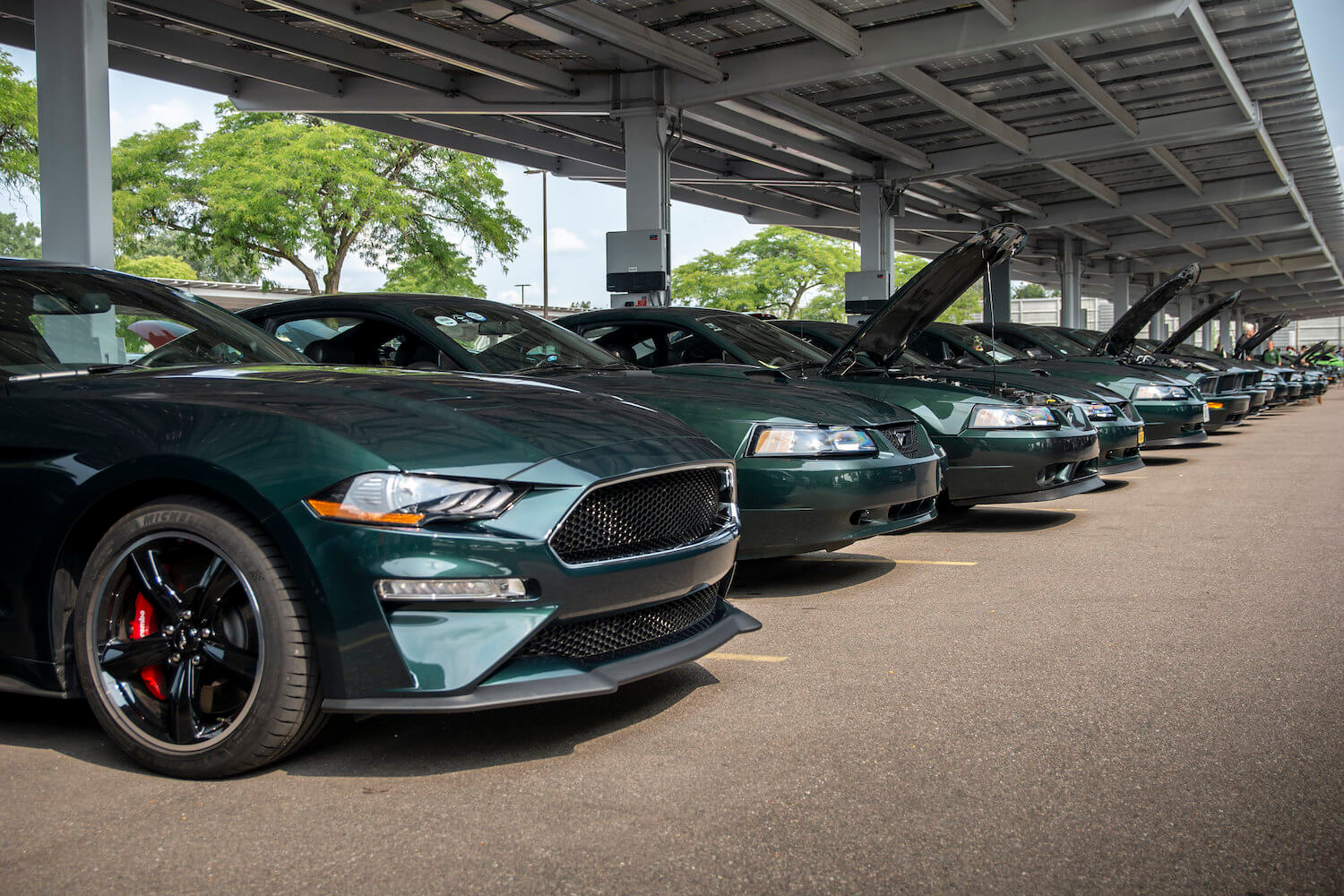 Mustang Bullitts On Display Ford HQ