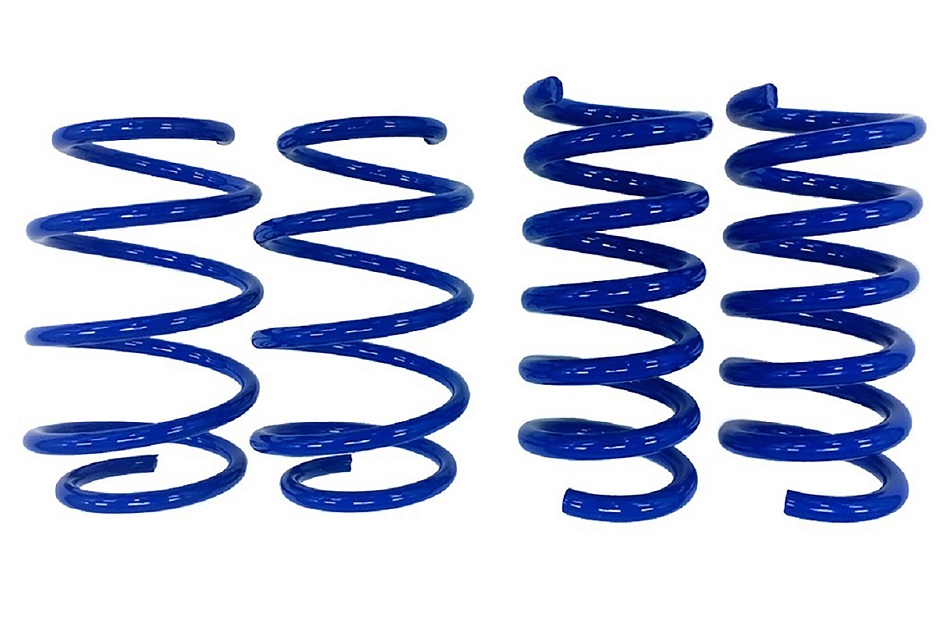 Steeda S550 Mustang Minimum Drop Lowering Springs - Linear (2015-2019)