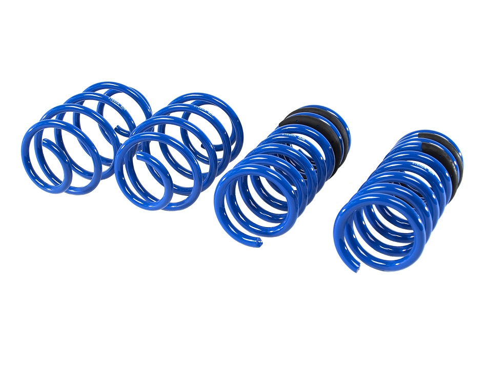 Steeda Ford Fusion Lowering Springs (13-20)