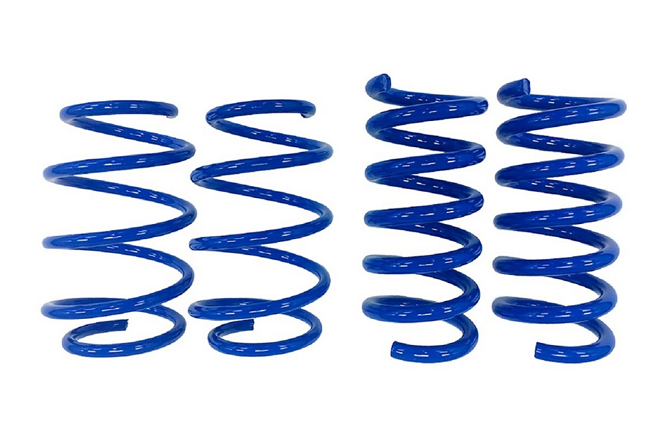 Steeda S550 Mustang Minimum Drop Lowering Springs - Linear (2015-2021)