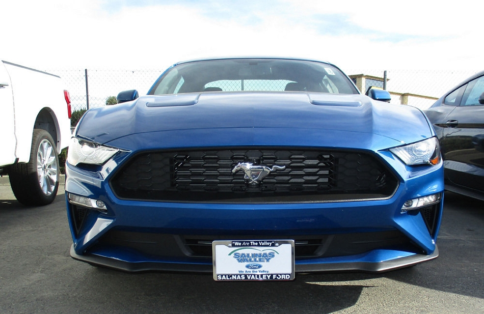 Sto N Sho Ford Mustang License Plate Bracket (2018)