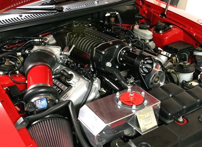 Whipple Mustang SVT Cobra W175AX 2.9L Supercharger Upgrade (2003-2004)