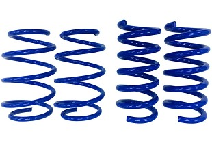 Mustang Lowering Springs; Suspension;