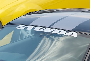 Steeda Windshield Decal - Assorted Colors
