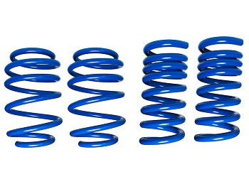 Steeda S550 Mustang Dual Rate Ultimate Handling Lowering Springs (2015-2019+)