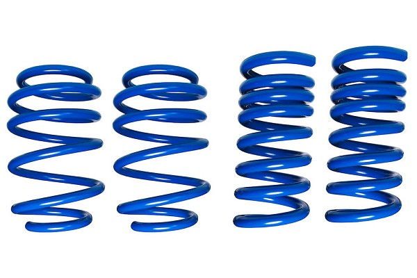 Steeda S550 Mustang Dual Rate Ultimate Handling Lowering Springs (2015-2020)