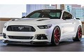 Steeda S550 Mustang Splitter for Q-Series Front Fascia (2015-2017)
