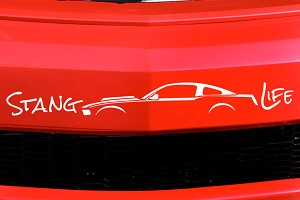 Stang Life Decal - White (10-14 All)