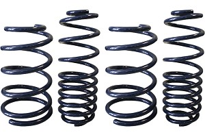 Steeda Ultra-Lite Mustang Lowering Springs (05-14)