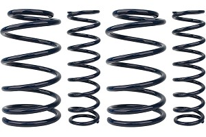 Steeda Mustang Competition Lowering Springs (05-14)