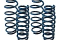 Steeda Ford Fusion Lowering Springs (13-18)