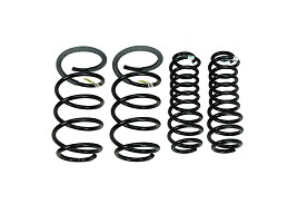 Ford Performance Mustang Cobra Jet Spring Kit (05-14) DISCONTINUED