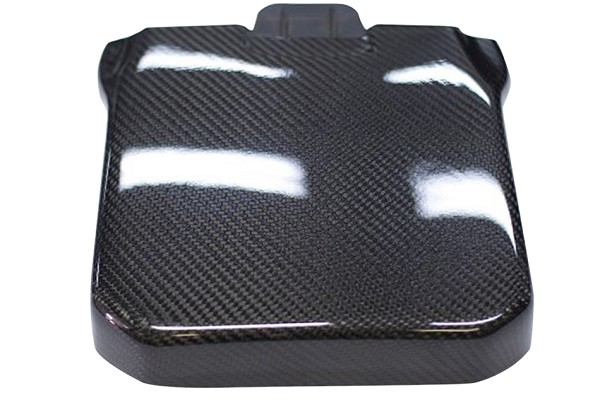 California Pony Cars Focus Carbon Fiber Battery Cover (12-18 All)