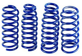Ford Performance N Lowering Springs (05-10 V6) DISCONTINUED
