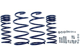 Ford Performance Focus ST Lowering Spring Kit (2012-2013 ST) DISCONTINUED