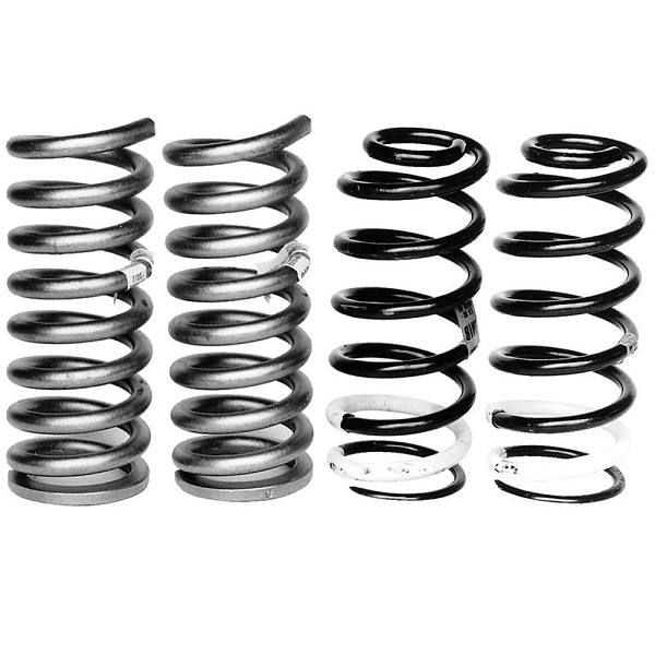 "Ford Performance Mustang Front/Rear Lowering ""B""Spring Kits (1979-2004)"