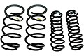 Ford Performance Mustang Cobra Jet Drag Springs (05-14)