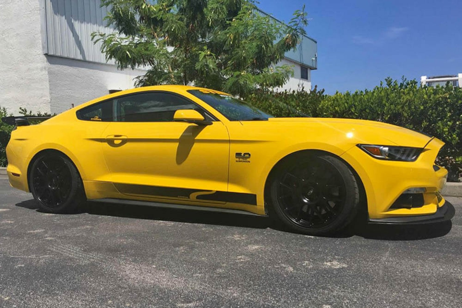 Steeda mustang ultralite extreme lowering springs linear 2015 2019