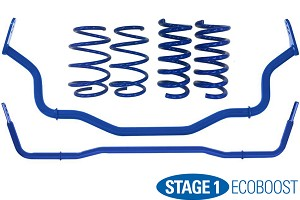 Steeda Stage 1 Mustang Handling Package - Linear  EcoBoost (2015-2020)