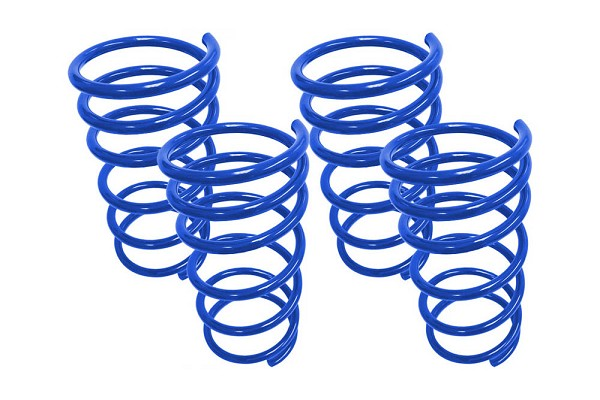 Steeda Focus RS Lowering Springs (2016-2018)