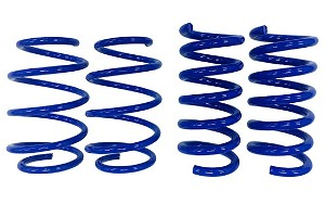 Steeda S550 Mustang Drag Springs - Linear (2015-2019 GT)
