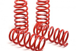 H&R Focus Race Springs (2000-2005)