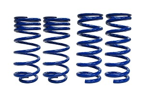 SLA Mustang Performance Lowering Springs (1979-2004 V8)