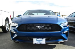 Sto N Sho Ford Mustang License Plate Bracket (2018-2020)